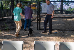 Duke-Dog-Park---Official-opening-136.jpg