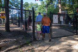 Duke-Dog-Park---Official-opening-151.jpg