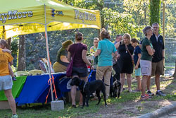 Duke-Dog-Park---Official-opening-33.jpg
