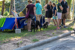 Duke-Dog-Park---Official-opening-37.jpg